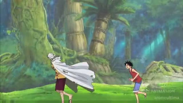Luffy and Rayleigh
