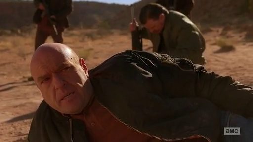 Hank after shooting